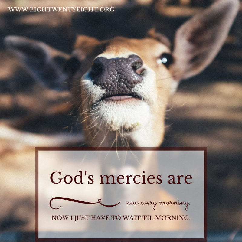 God's Mercies Sarcasm
